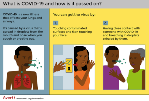 What is it COVID-19 and how is it spread An infographic by Avert